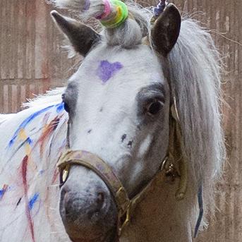 pony_fingerfarbe
